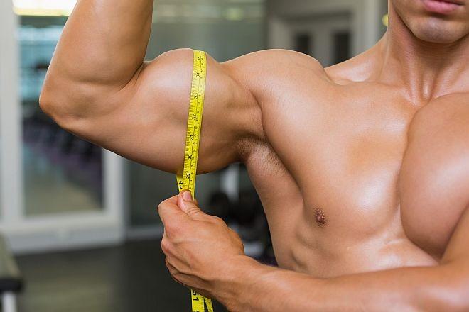 metabolizam u izgradnji mišića